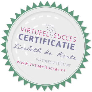 Virtueel Succes